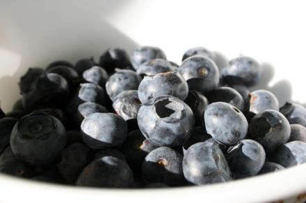 Fresh Bluberries