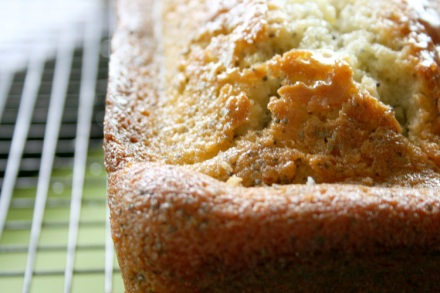 Lemon Poppy Seed Pound Cake close up