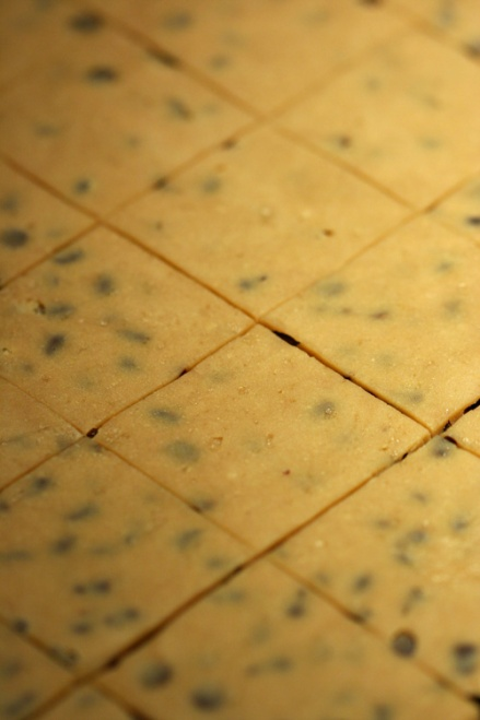 Espresso-Chocolate Shortbread cut into squares