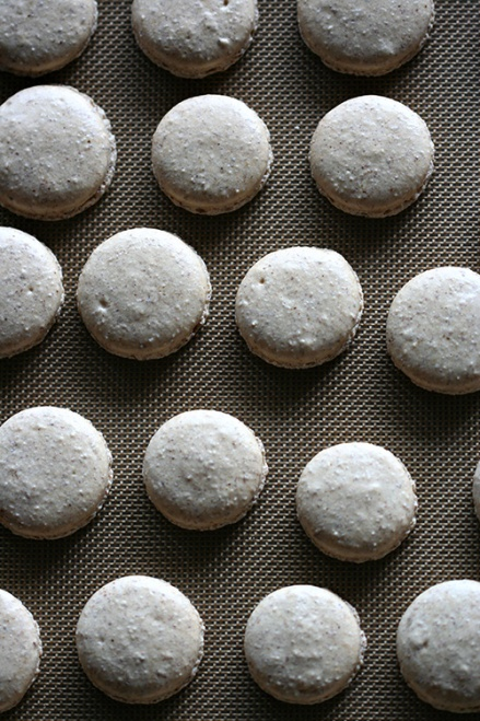 Coffee Macaron Shells  |  Amandeleine